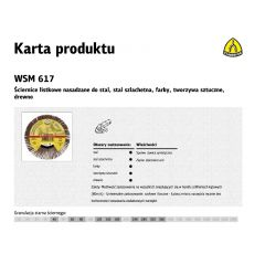 KLINGSPOR ŚCIERNICA LISTKOWA NASADZANA 125mm WSM615 gr.240 254430