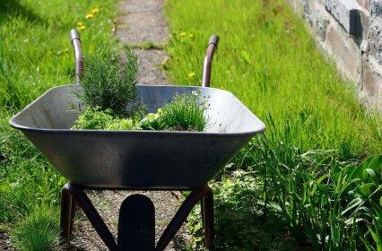 Taczka ogrodowa: Jaka taczka do ogrodu będzie najlepsza?
