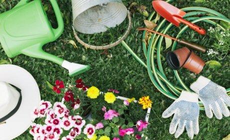 Porządki w ogrodzie – jakie narzędzia ogrodowe są do nich niezbędne?